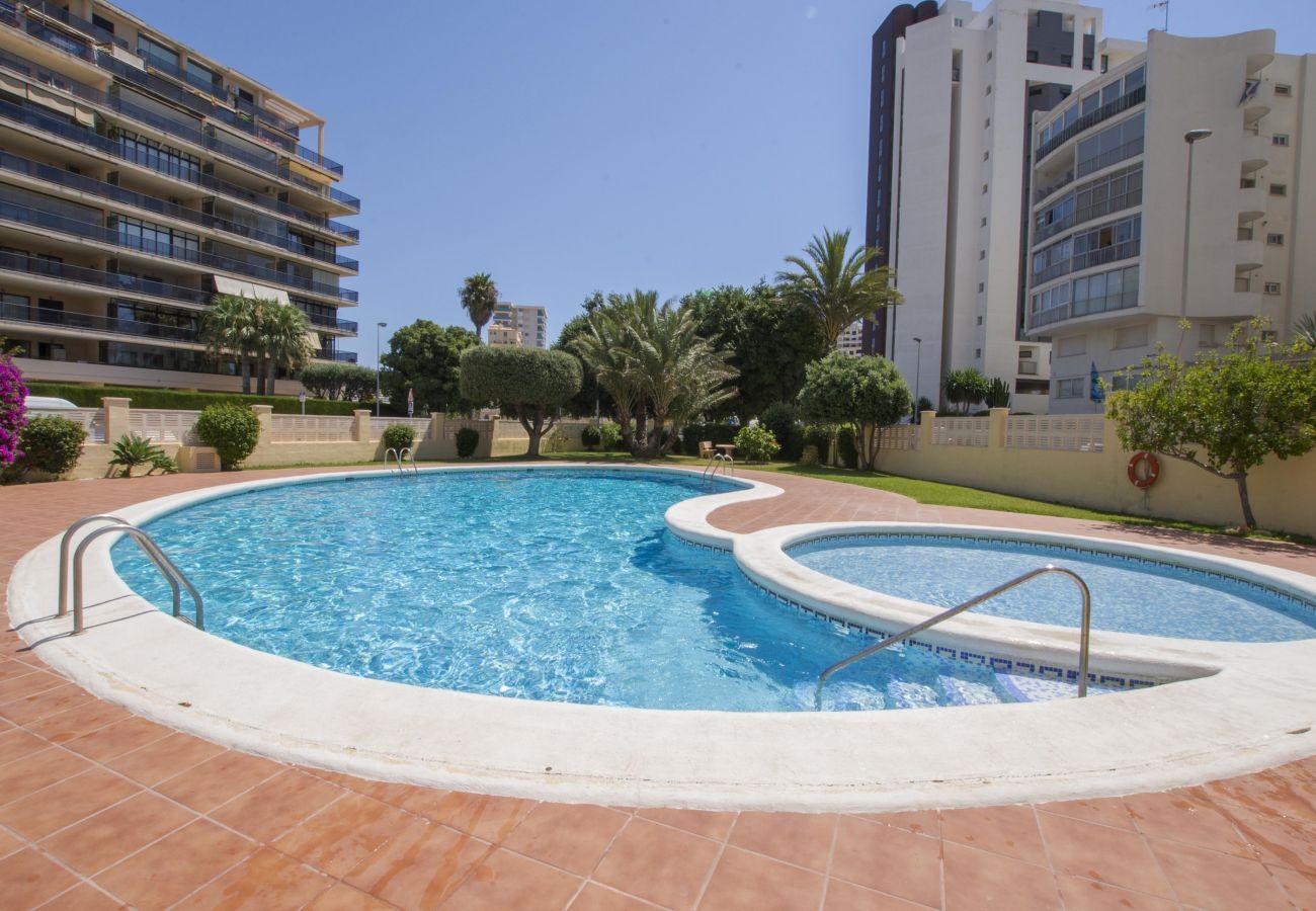 Apartamento en Calpe - A05 EDIFICIO LA REINA 7º 41